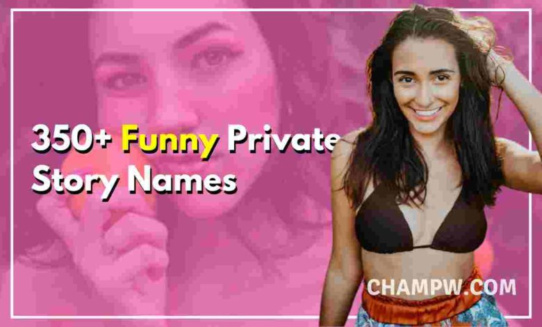 350+ Funny Private Story Names You Must Try