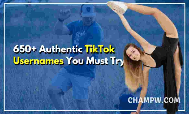 650+ Authentic TikTok Usernames You Must Try