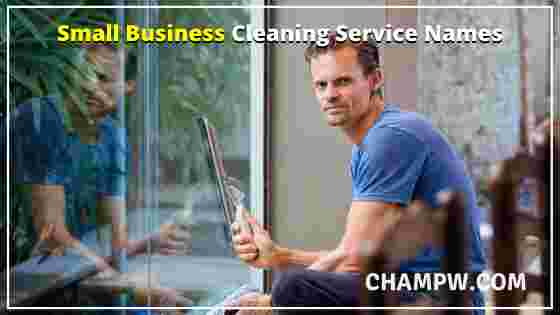 SMALL BUSINESS CLEANING SERVICE NAMES
