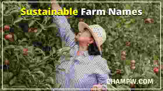 Sustainable Farm Names